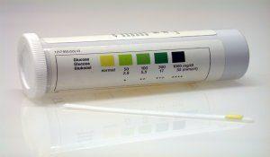 valutazione urine cane diabetico