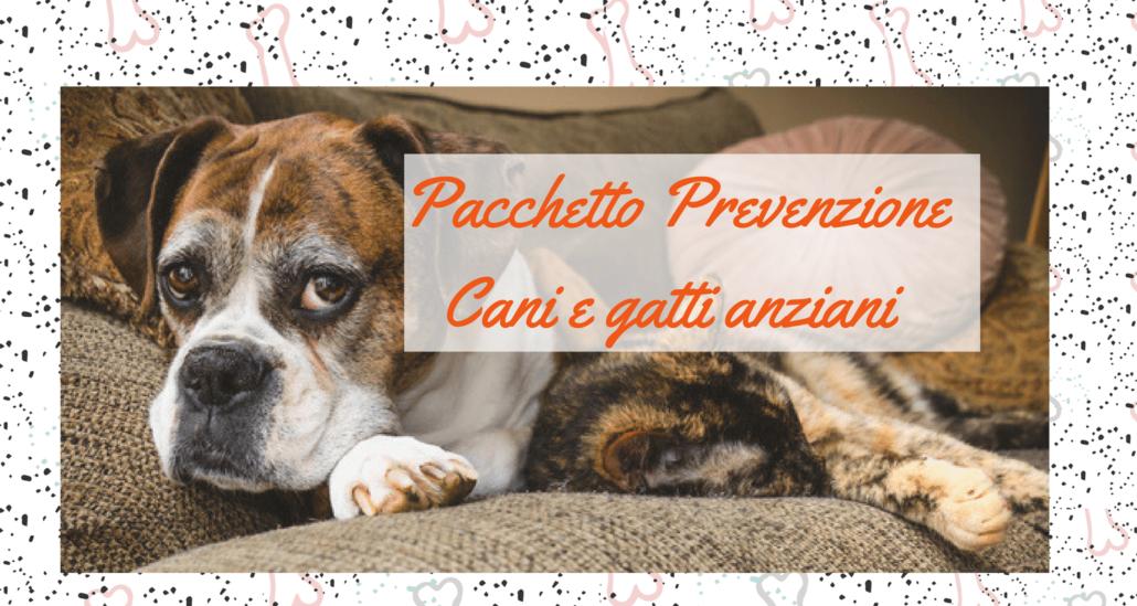 kit prevenzione cani anziani (1)
