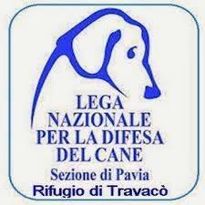 Logo Rifugio del cane
