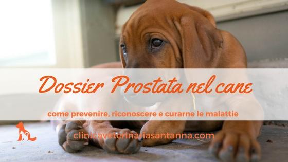 come trattare lingrossamento della prostata senza farmaci