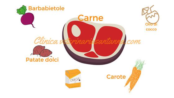 alimentazione pancreatite