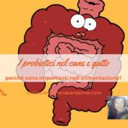 probiotici e microbioma intestinale del cane