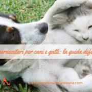antiparassitari per cani e gatti