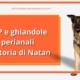 Ghiandole perianali cane LA STORIA DI NATAN